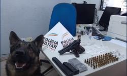 Cão farejador encontra drogas e armas em Manhuaçu