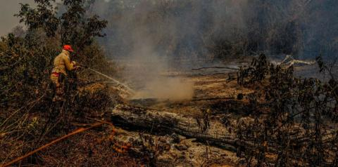 Governo publica decreto que suspende uso do fogo durante a seca
