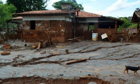 Propriedades rurais devastadas pela lama em Mariana devem começar recuperação em outubro