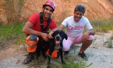 Bombeiros fazem rapel para resgatar cachorro a 15 metros de altura