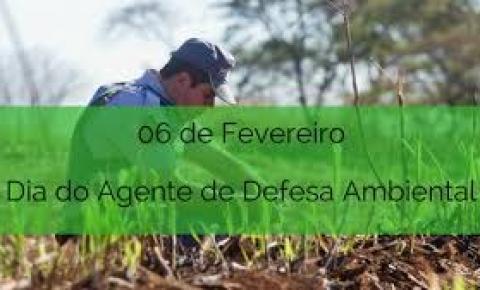 O que faz um Agente de Defesa Ambiental?