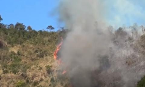 Fauna da pedra Itaúna é afetada pelos incêndios na área de preservação