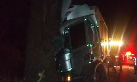 Ocupante de caminhão morre preso às ferragens após veículo bater em árvore na BR-116 em Santa Bárbara do Leste