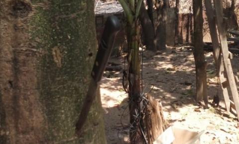 Homem amarra e esquarteja cadela viva no quintal de casa, em Timóteo