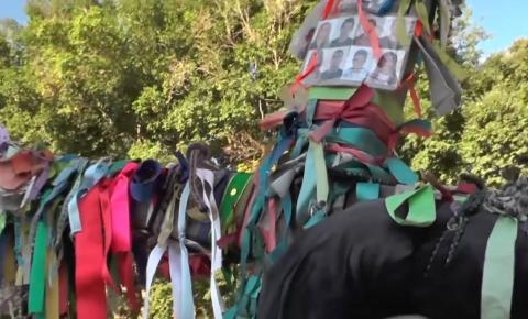 Idoso pagador de promessa carrega cruz de 33 quilos de Caruaru-PE com destino à cidade de Aparecida-SP.